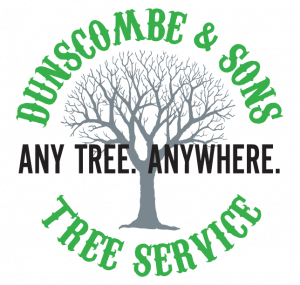 Dunscombe and Sons Tree Service
